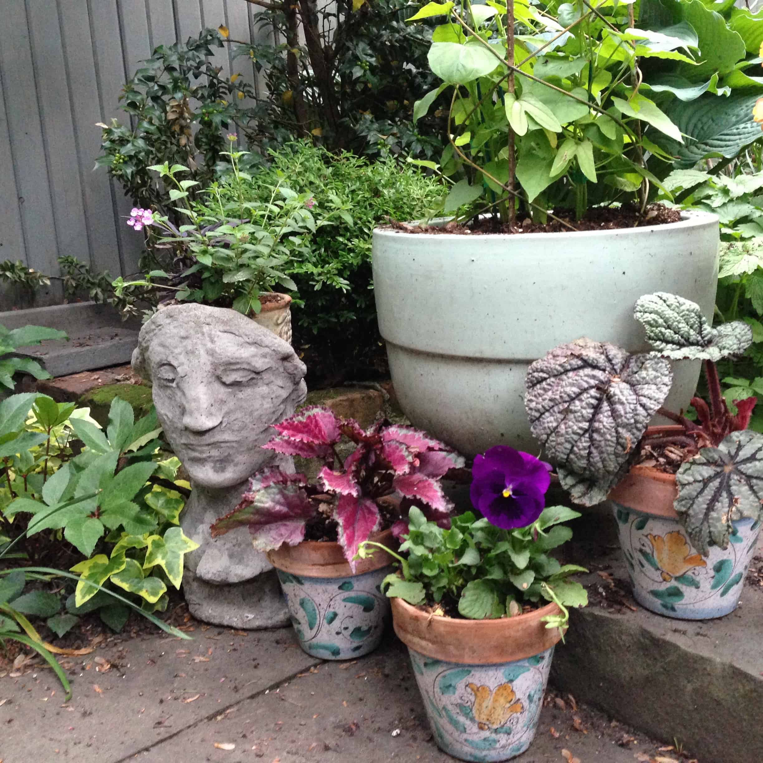 """Some pots. I love the """"iron maiden"""" pot, and giving her a different crown of flowers each year."""