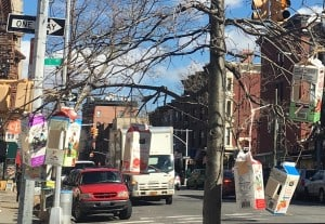 Bird feeders hanging from tree in front of an elementary school in Park Slope.