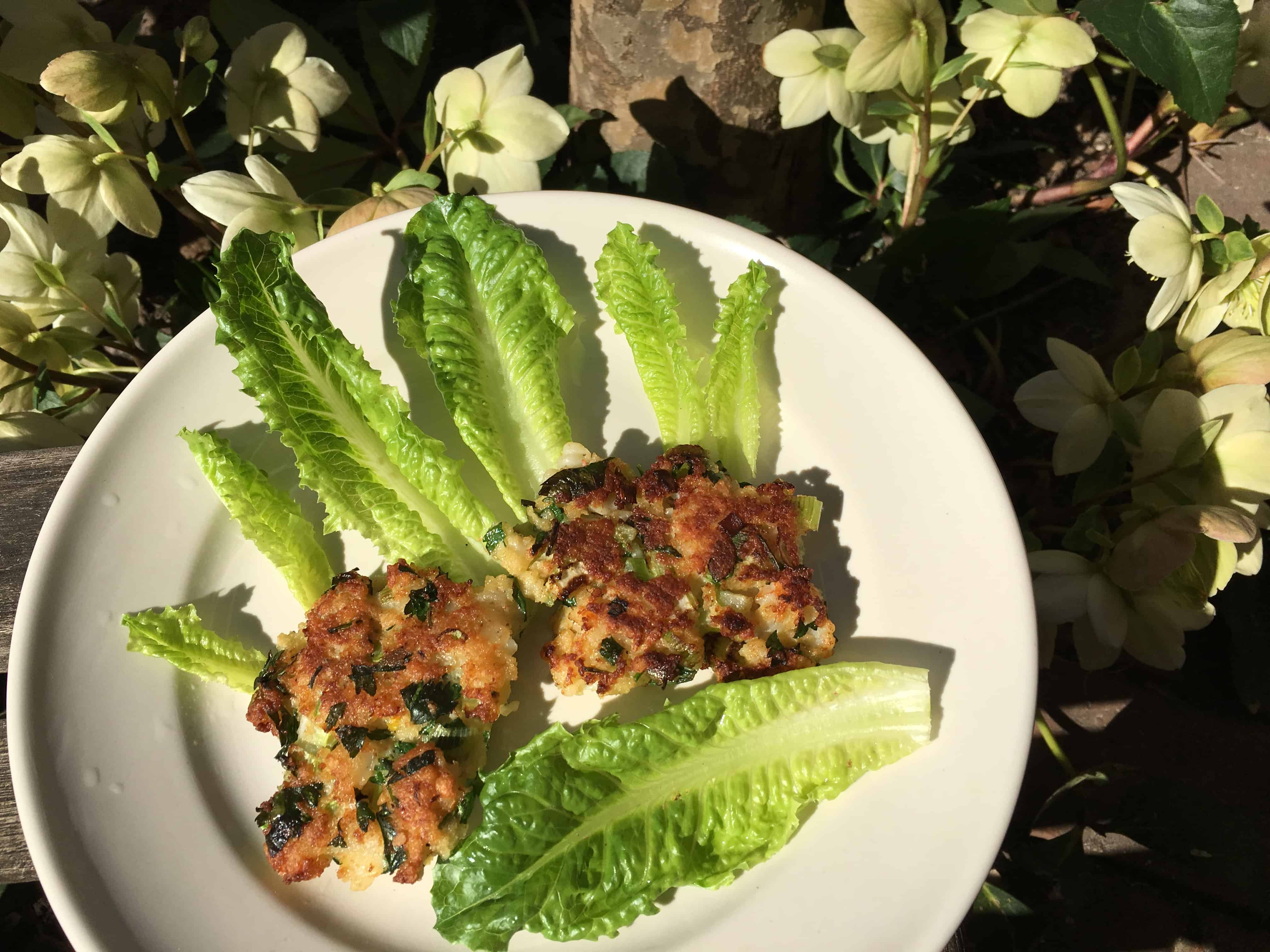 Shrimp Cakes with a view of the Hellebores blooming in the garden.