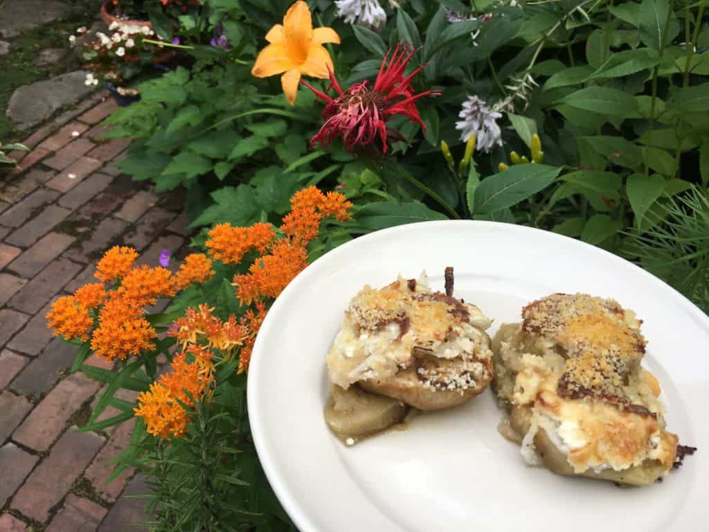 Baked Eggplant with Cheeses and Anchovy, with milkweed blooming in the background (for the butterflies).